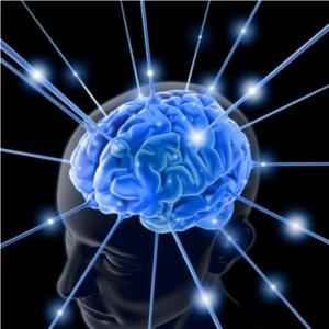 brain_image